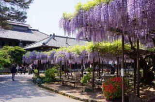 新潟の観光スポット北方文化博物館